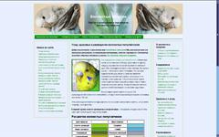 сайт про папуг