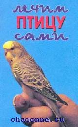 книга про попугая