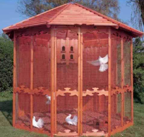 вольер для птиц фото
